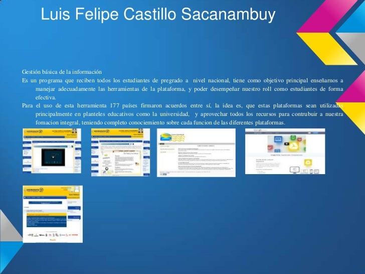Luis Felipe Castillo SacanambuyGestión básica de la informaciónEs un programa que reciben todos los estudiantes de pregrad...