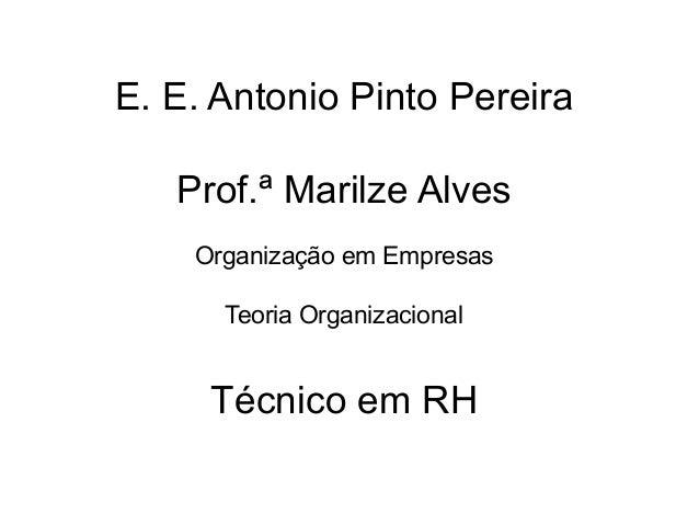 E. E. Antonio Pinto Pereira   Prof.ª Marilze Alves    Organização em Empresas      Teoria Organizacional     Técnico em RH