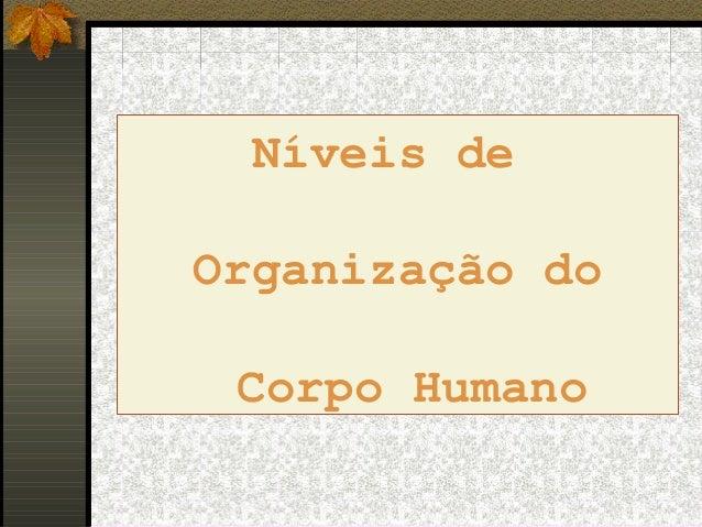 Níveis deOrganização doCorpo Humano