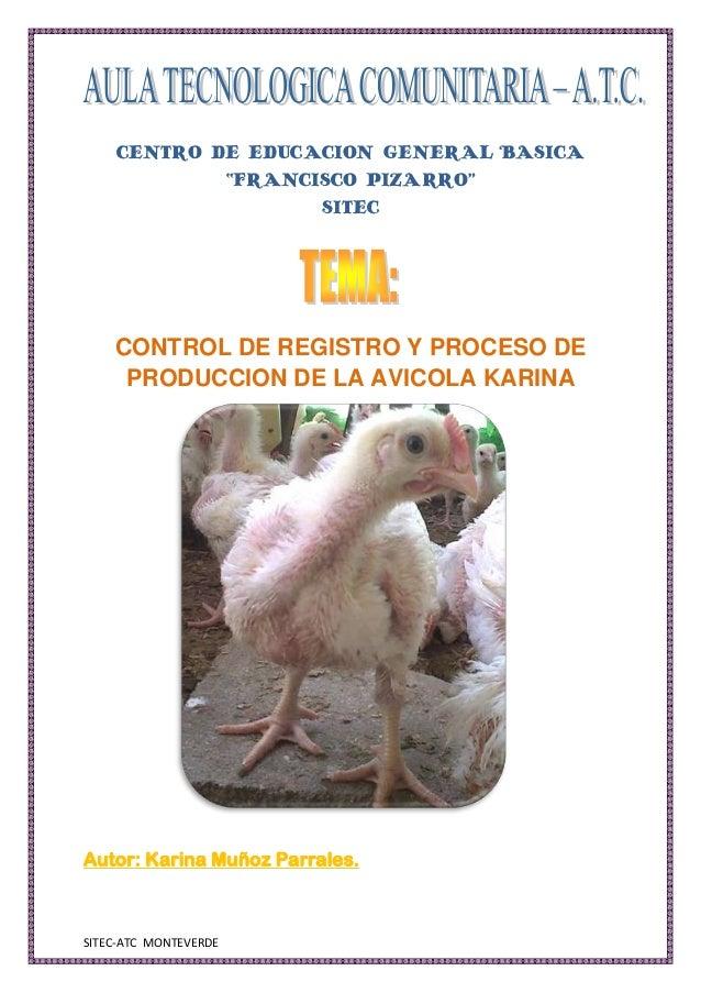 """CENTRO DE EDUCACION GENERAL BASICA            """"FRANCISCO PIZARRO""""                   SITEC    CONTROL DE REGISTRO Y PROCESO..."""