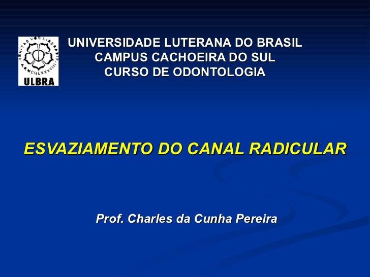 UNIVERSIDADE LUTERANA DO BRASIL CAMPUS CACHOEIRA DO SUL CURSO DE ODONTOLOGIA ESVAZIAMENTO DO CANAL RADICULAR Prof. Charles...