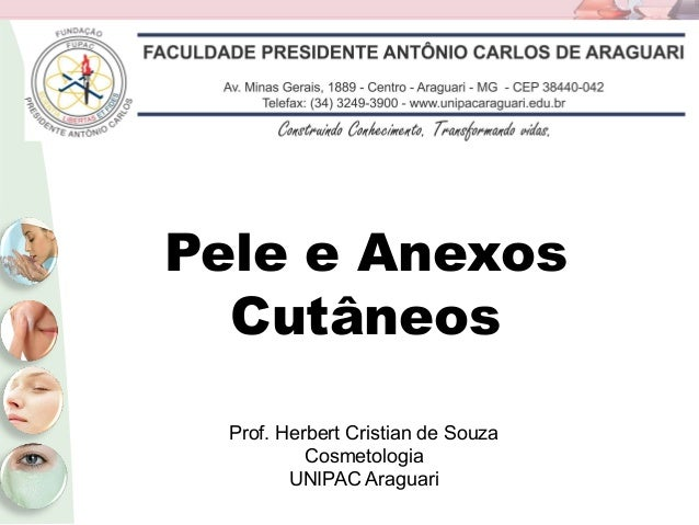 Pele e Anexos Cutâneos Prof. Herbert Cristian de Souza Cosmetologia UNIPAC Araguari