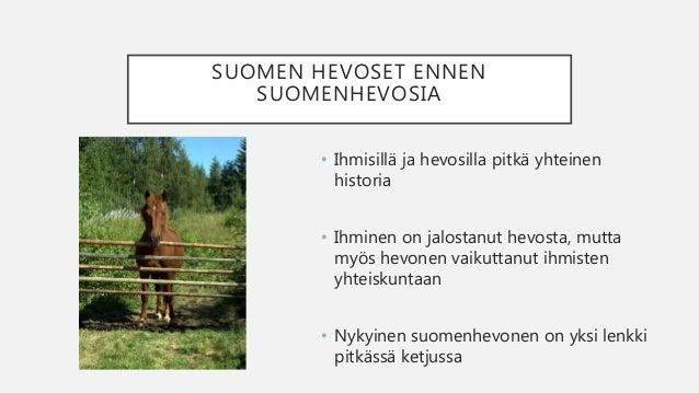 Hevosen Historia