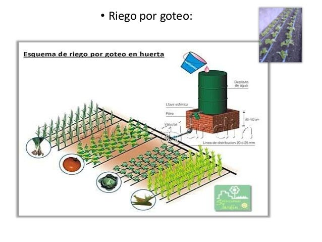 Sistemas de riego en la huerta urbana for Sistema de riego