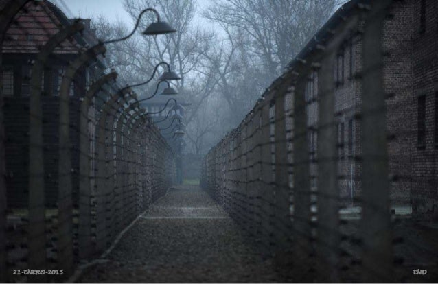 Auschwitz Survivors, 70th Anniversary of the Liberation of the Nazi Concentration Camp