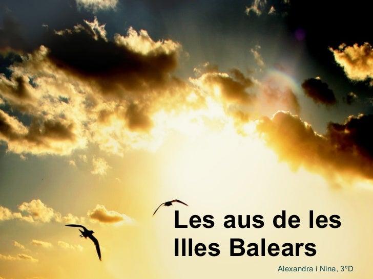 Les aus de les Illes Balears Alexandra i Nina, 3ºD
