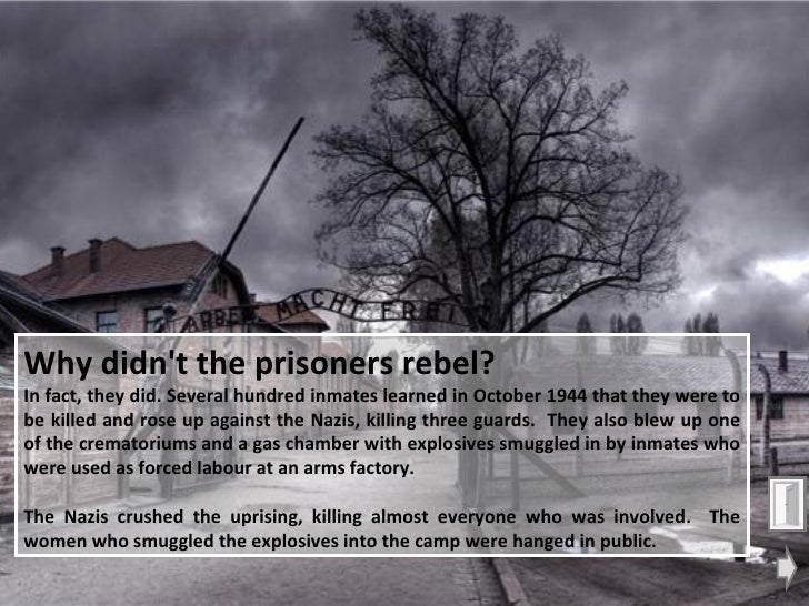 PowerPoint: Auschwitz Concentration Camp