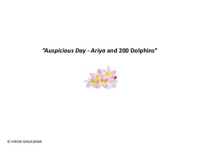 "© HIROKI NAGASAWA  ""Auspicious Day - Ariya and 200 Dolphins"""
