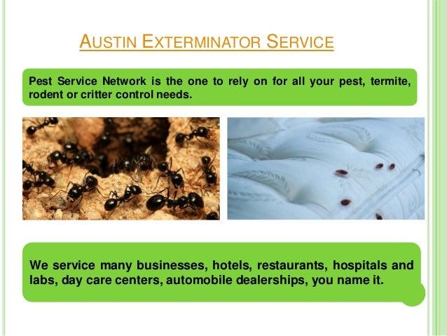 Austin pest control service Slide 3