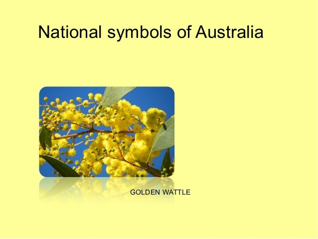 national symbols of australia Get this from a library australia's awards & national symbols [australia department of administrative services].