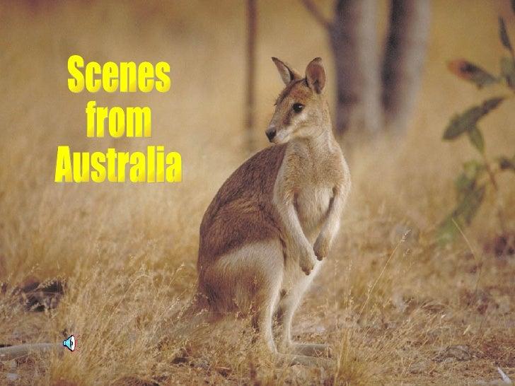 Scenes from Australia