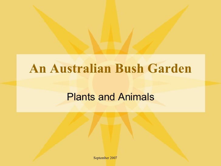 An Australian Bush Garden Plants and Animals September 2007
