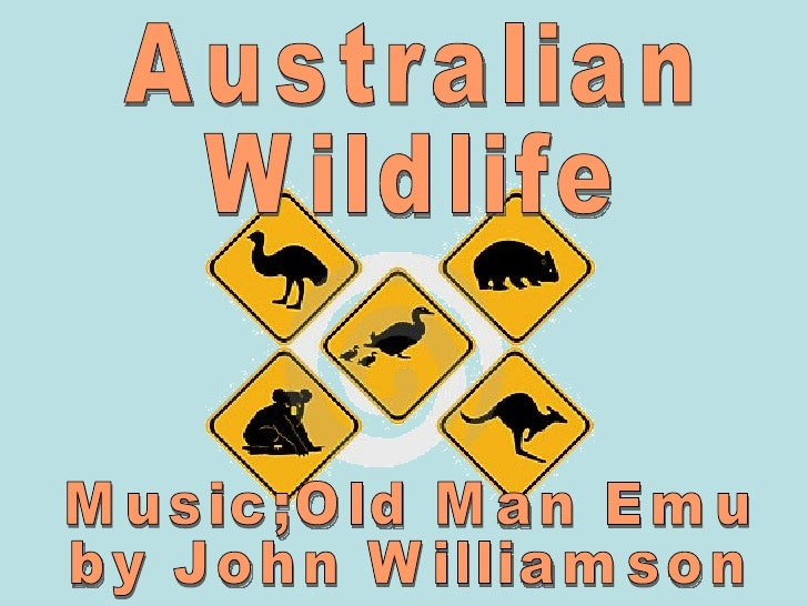 Australian Wildlife Music;Old Man Emu by John Williamson