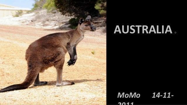 AUSTRALIA       OMoMo   14-11-