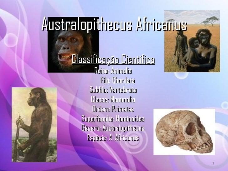 Australopithecus Africanus Classificação Científica Reino: Animalia Filo: Chordata Subfilo: Vertebrata Classe: Mammalia Or...