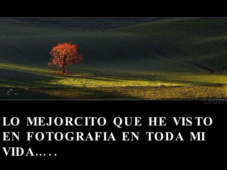 LO MEJORCITO QUE HE VISTO EN FOTOGRAFIA EN TODA MI VIDA….. Lino