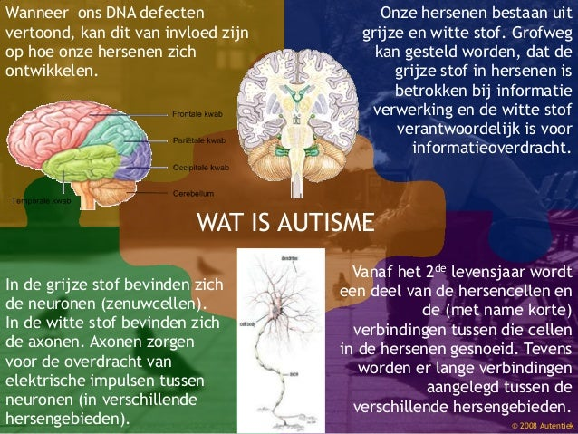 Wanneer ons DNA defecten vertoond, kan dit van invloed zijn op hoe onze hersenen zich ontwikkelen. In de grijze stof bevin...