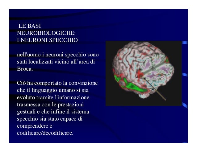 Autismo - Neuroni specchio e autismo ...