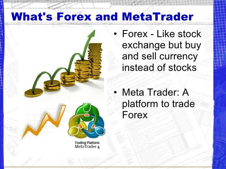 Meta forex trading
