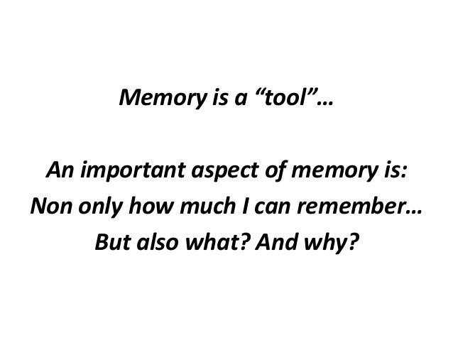 the importance of a memory A good memory is truly important for anyone to possess your memory of faces, names, facts, information, dates, events, circumstances and other things concerning your everyday life is the measure of your ability to prevail in today's fast-paced, information-dependent society.