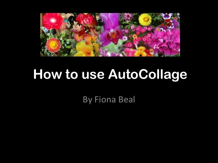 How to use AutoCollage       By Fiona Beal