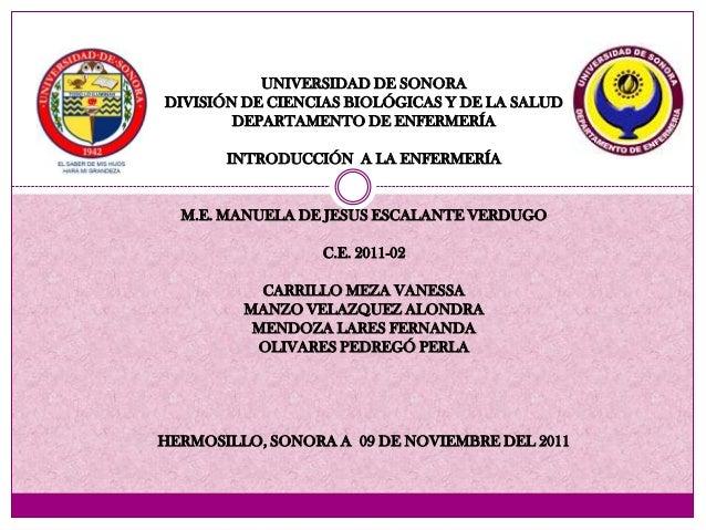 UNIVERSIDAD DE SONORADIVISIÓN DE CIENCIAS BIOLÓGICAS Y DE LA SALUD        DEPARTAMENTO DE ENFERMERÍA       INTRODUCCIÓN A ...