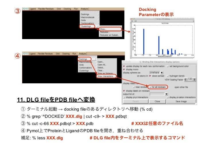AutoDock_japanese_ver 1 0