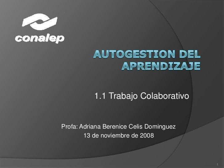 AUTOGESTION DEL APRENDIZAJE<br />1.1 TrabajoColaborativo<br />Profa: Adriana BereniceCelis Dominguez<br />13 de noviembre ...