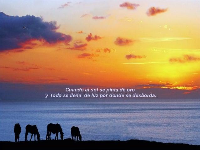 Cuando el cielo se hace de miles tonalidades,            imborrables, en un amanecer indescriptible.02.05.11