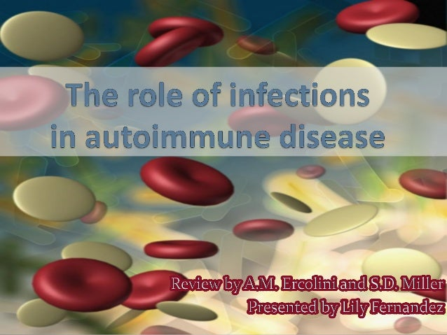 Introduction  Autoimmunity occurs  when the immune system recognizes and attacks its own host tissue.  Many factors are ...