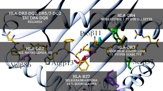 NOIDANKEHÄ AIVOT-SUOLISTO AKSELI Bested, A. C., Logan, A. C., & Selhub, E. M. (2013). Intestinal microbiota, probiotics an...