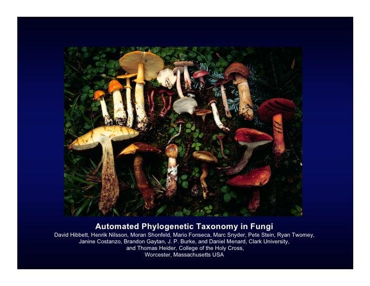 Automated Phylogenetic Taxonomy in Fungi David Hibbett, Henrik Nilsson, Moran Shonfeld, Mario Fonseca, Marc Snyder, Pete S...
