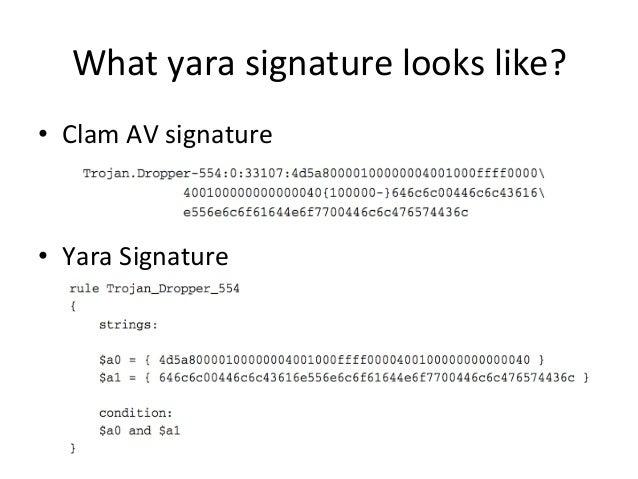 What  yara  signature  looks  like?  • Clam  AV  signature  • Yara  Signature