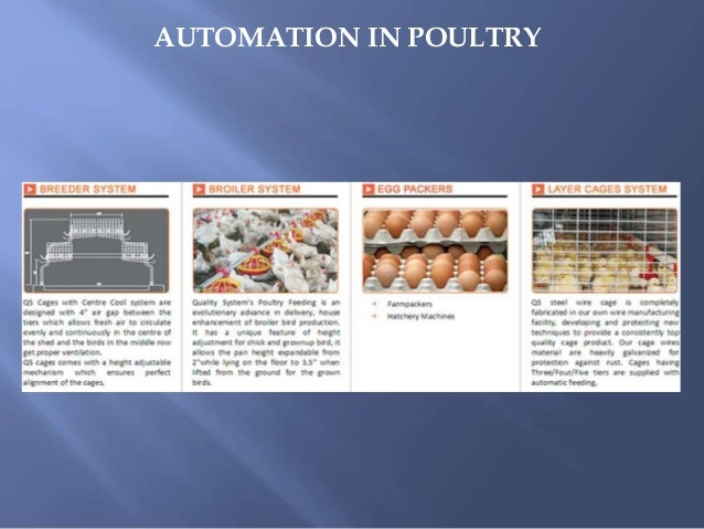 Cages Manufacturer, Poultry Equipments in India Slide 3