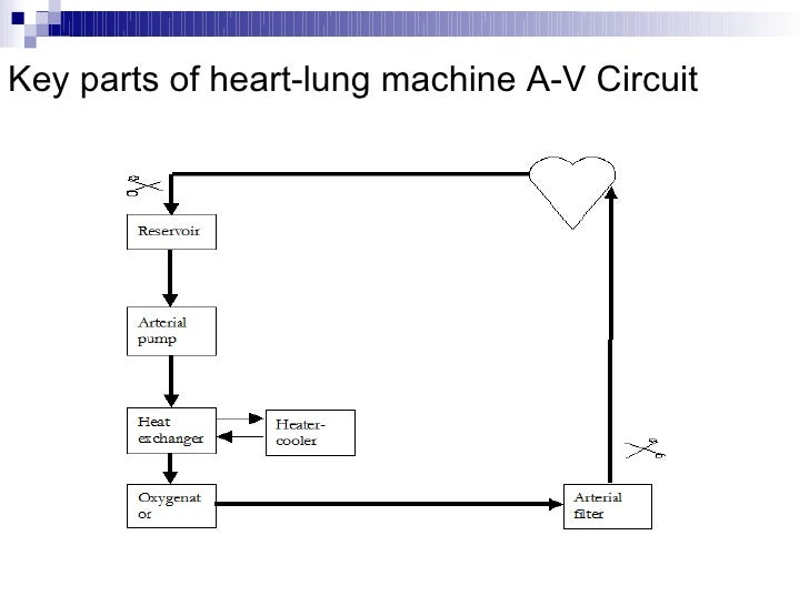 lung machine diagram