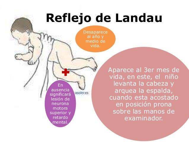 Los dolores en el vientre que dan en la espalda el tratamiento