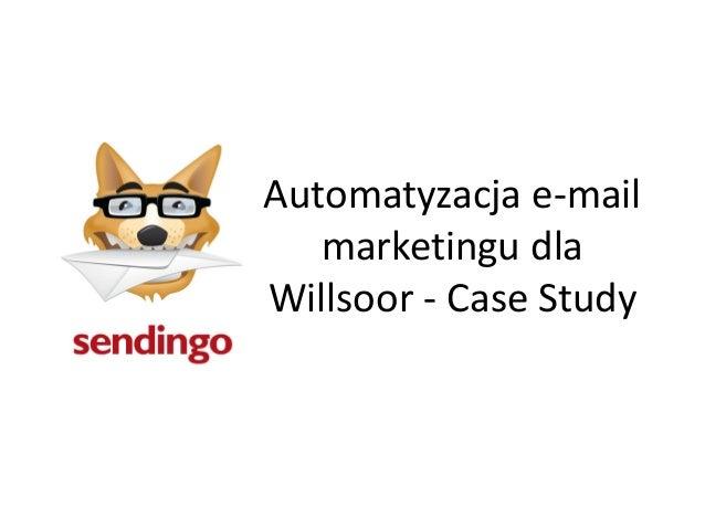 Automatyzacja e-mail   marketingu dlaWillsoor - Case Study