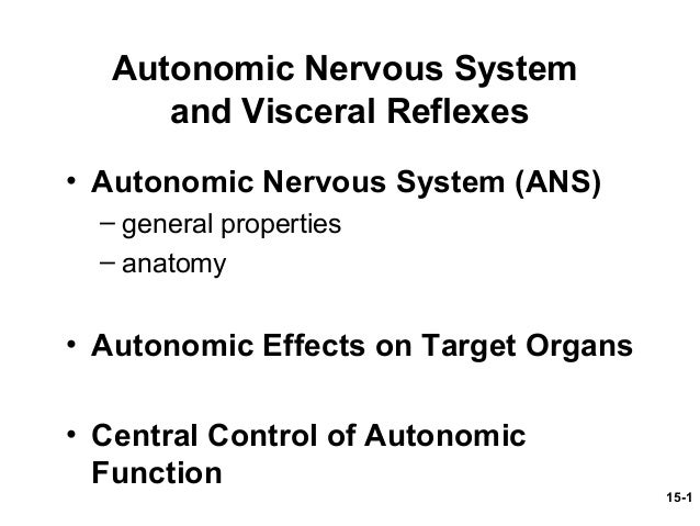 visceral reflex arcs differ from somatic in that