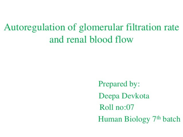 renal blood flow and gfr relationship definition