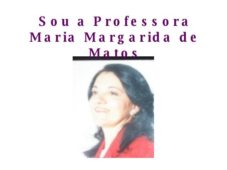 Sou a Professora Maria Margarida de Matos