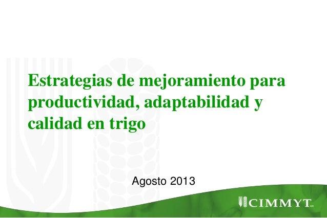 Estrategias de mejoramiento para productividad, adaptabilidad y calidad en trigo Agosto 2013
