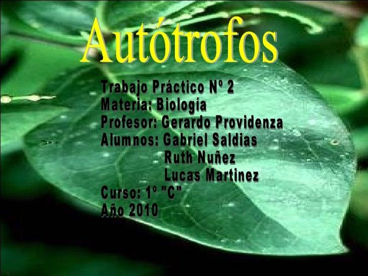 Autótrofos Trabajo Práctico Nº 2 Materia: Biología Profesor: Gerardo Providenza Alumnos: Gabriel Saldias Ruth Nuñez Lucas ...