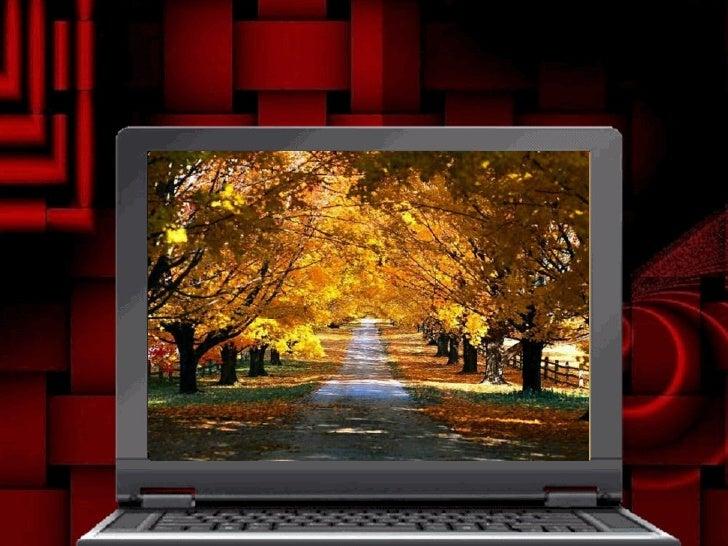 Autumn Slide 2