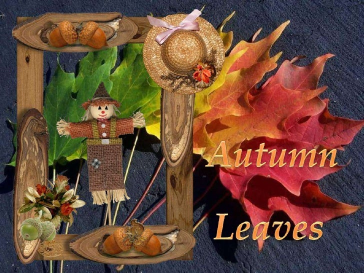 Autumn<br />Leaves<br />