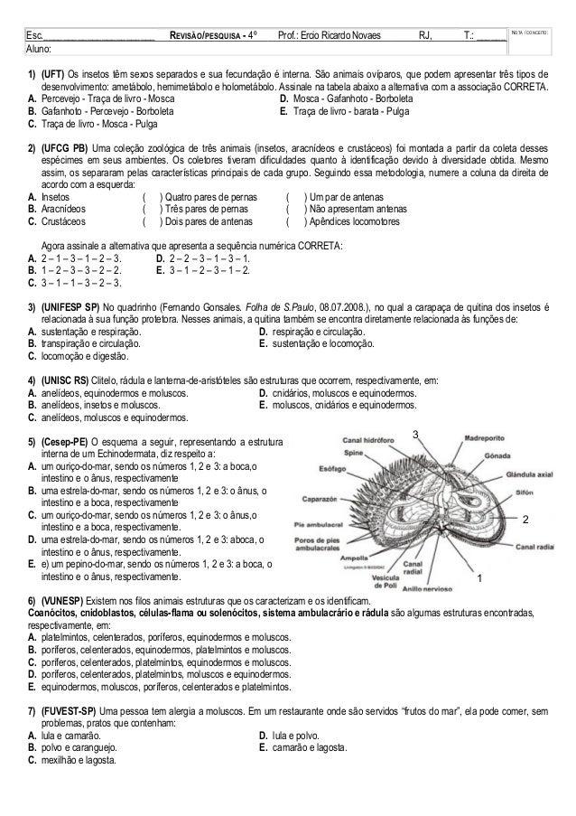 Esc._______________________ REVISÃO/PESQUISA - 4º Bim. Prof.: Ercio Ricardo Novaes RJ, ___/___/___ T.: ______ NOTA / CONCE...