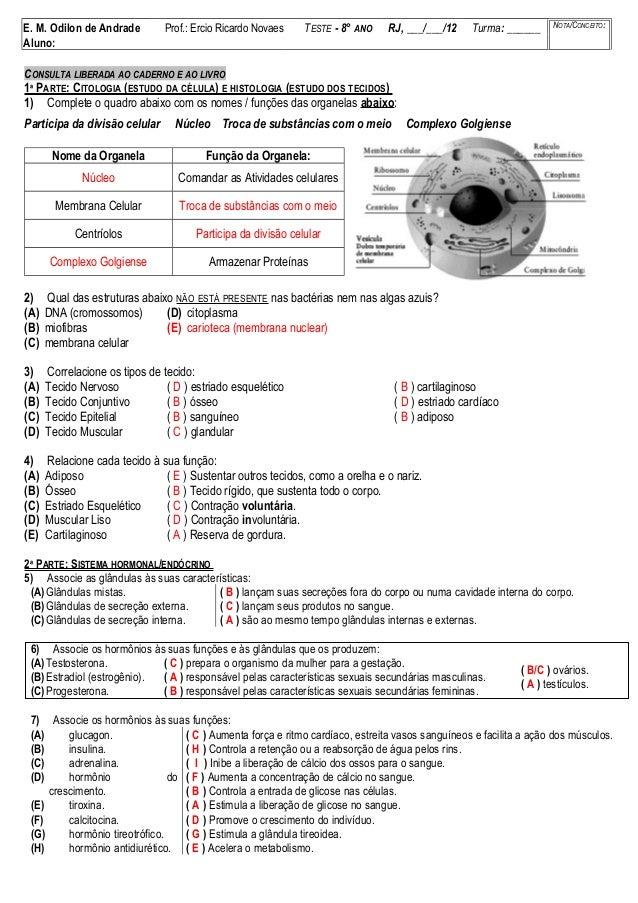 E. M. Odilon de Andrade Prof.: Ercio Ricardo Novaes TESTE - 8° ANO RJ, ___/___/12 Turma: ______ NOTA/CONCEITO: Aluno: CONS...