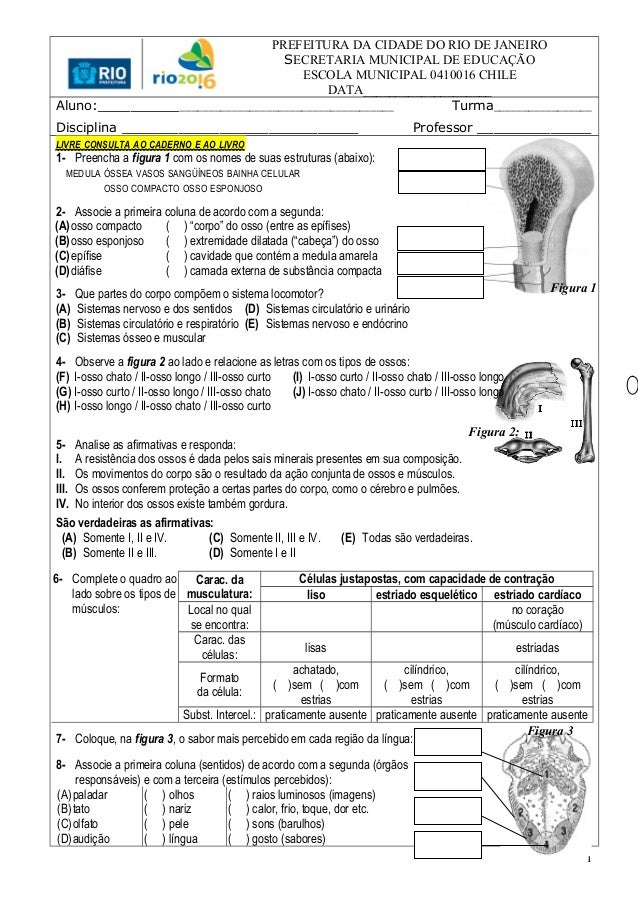 PREFEITURA DA CIDADE DO RIO DE JANEIRO SECRETARIA MUNICIPAL DE EDUCAÇÃO ESCOLA MUNICIPAL 0410016 CHILE DATA_______________...