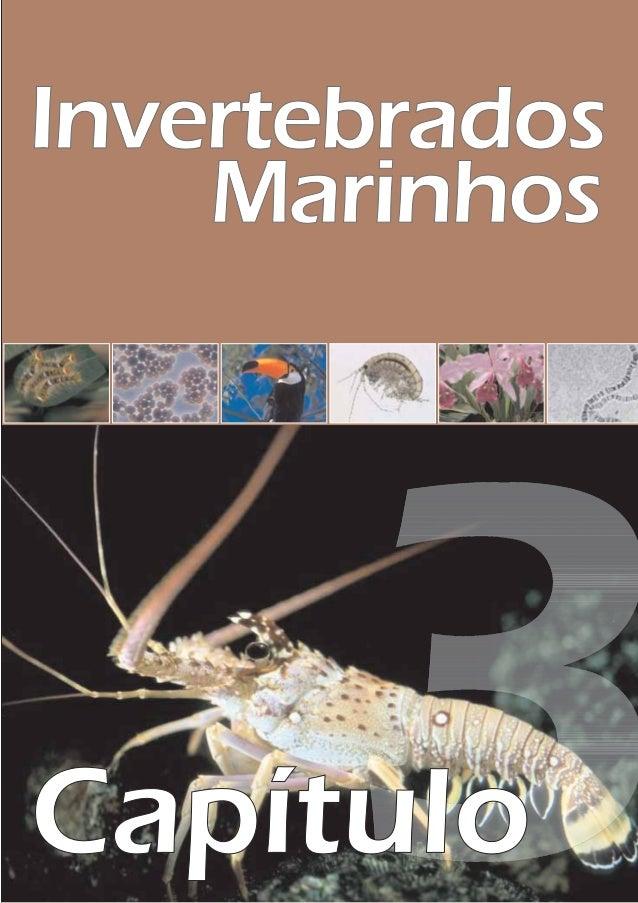"""149149 InvertebradosMarinhos Alvaro E. Migotto1 Antonio C. Marques2 INTRODUÇÃO """"The future historians of science may well ..."""