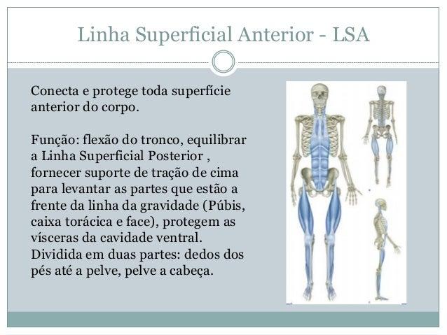 Trilhos Anatomicos Livro Download 68