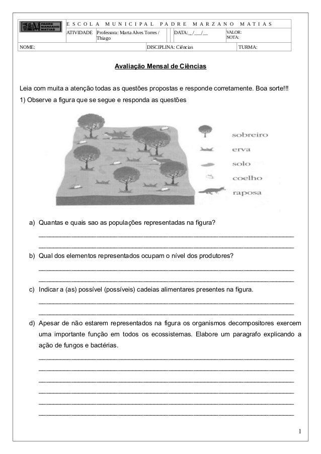 E S C O L A M U N I C I P A L P A D R E M A R Z A N O M A T I A S ATIVIDADE Professora: Marta Alves Torres / Thiago DATA:_...